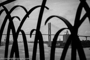 Savannah Talmadge Bridge