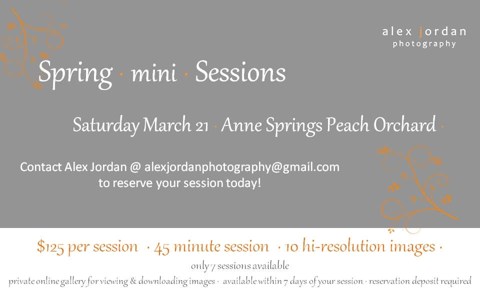 AJP Spring Mini Session 2015 PNG (2)